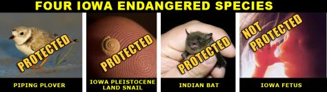 endagered-species2