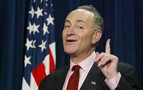 """Senator Schumer: Democrats """"blew it!"""""""
