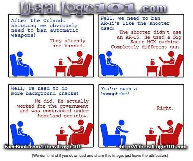 arguing-with-a-liberal-on-gun-control